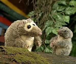 The Possums