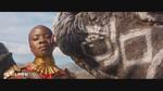 Носорог облизывает лицо Окойе