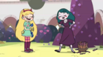 Star and Eclipsa 1