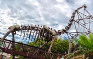 The boneyard1 large