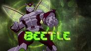 BeetleBild2