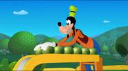 Goofy rolls the beans down the slide