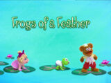 Frogs of a Feather