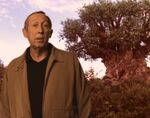 Roy Disney in front of Tree of Life