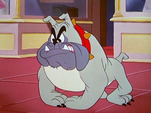 Butch il bulldog
