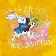 Late white rabbit