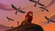 Lion-king2-disneyscreencaps.com-6959