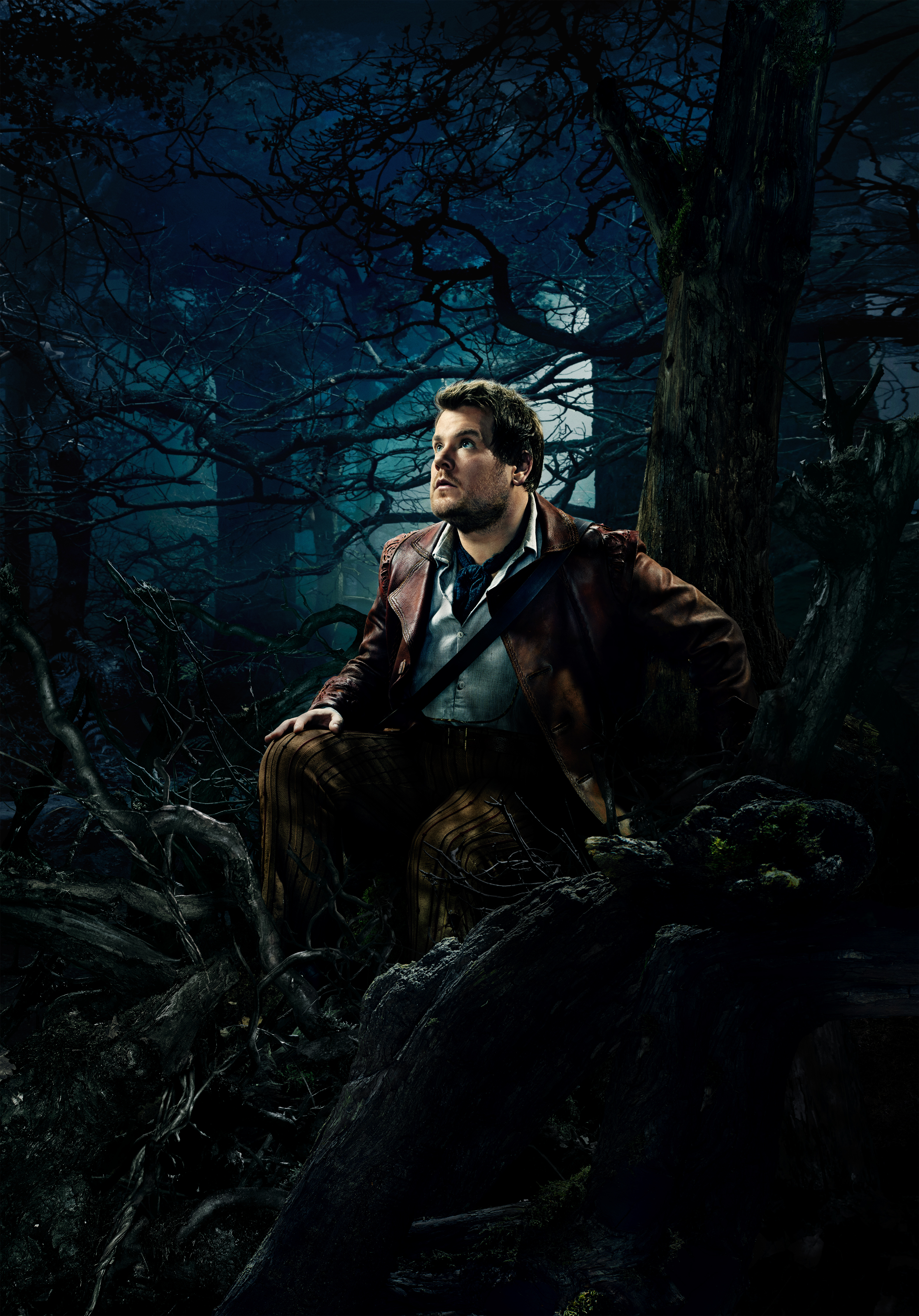 Baker (Into the Woods)