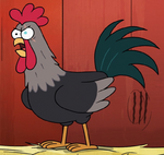 Cogburn the Rooster
