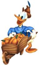 Donald campesino