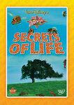 Secrets of Life DMC Exclusive