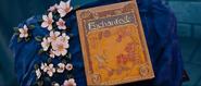 Enchanted storybook closing