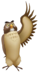 Owl KH