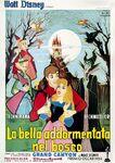 Sleeping beauty italian poster alternate 2