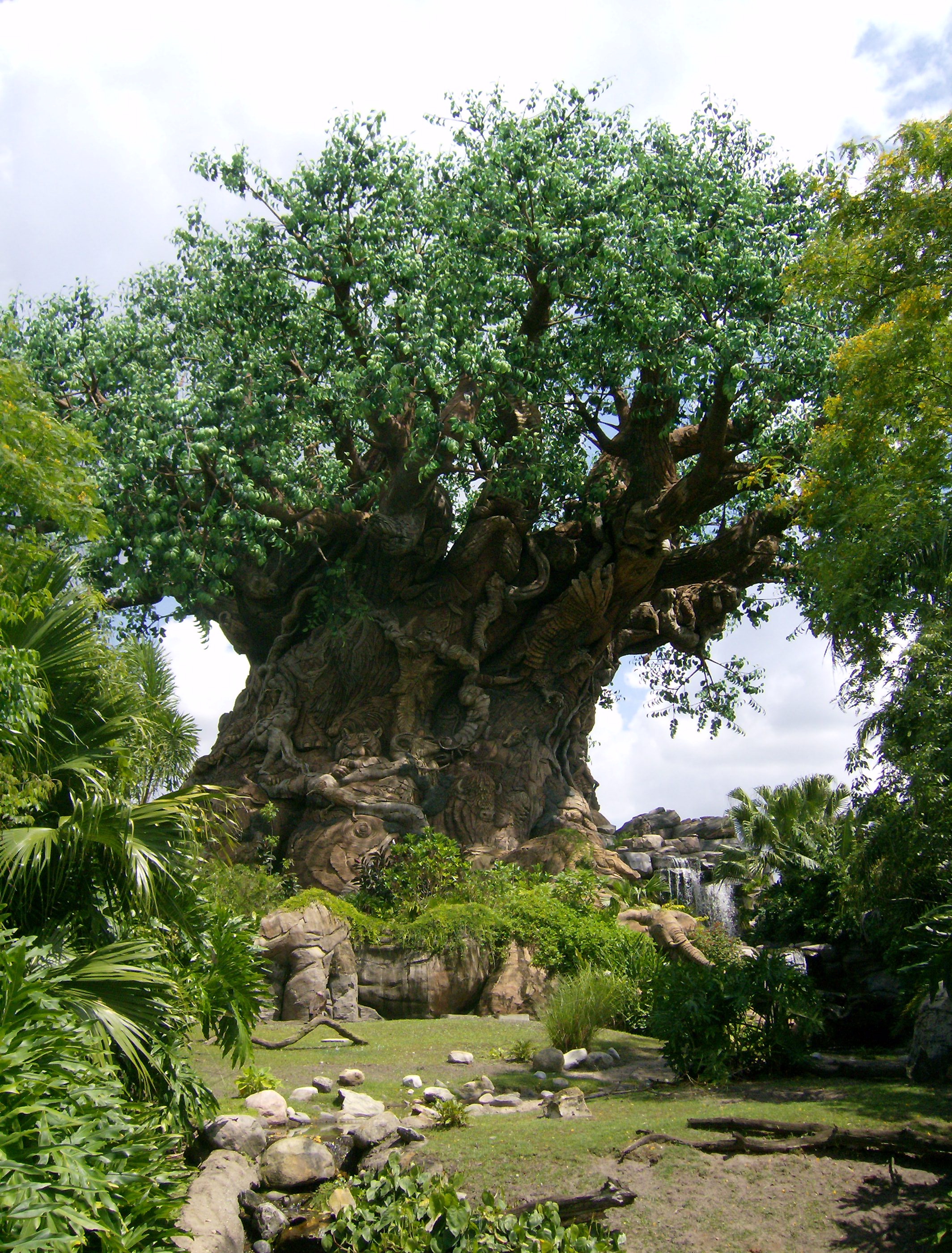 Tree Of Life Disney Wiki Fandom there are parts of tthe tree of life that are mesmerizing and awe inspiring, however, there are other parts that should have been left on the cutting room floor. tree of life disney wiki fandom
