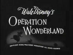 OperationWonderland3.jpg