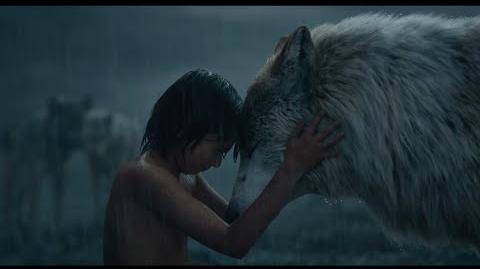"Disney's The Jungle Book clip ""Mowgli Leaves the Pack"""