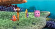 Nemo10