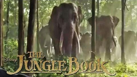 THE JUNGLE BOOK - Lebe die Legende - Ab 14