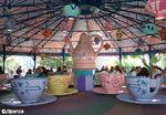 Mad Tea Party at Magic Kingdom 4