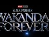 Pantera Negra: Wakanda Para Sempre
