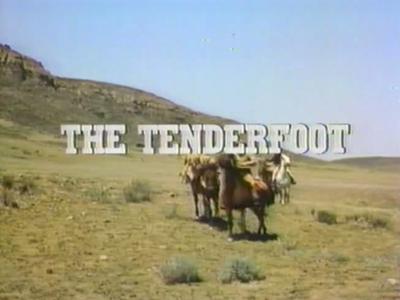 The Tenderfoot (TV film)