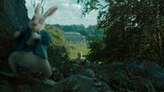 Alice-in-wonderland-disneyscreencaps.com-1294