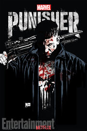 The Punisher poster.jpg