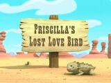 Priscilla's Lost Love Bird