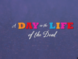 A Day in the Life of the Dead