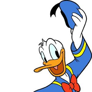 Disneys donald duck-1062.jpg