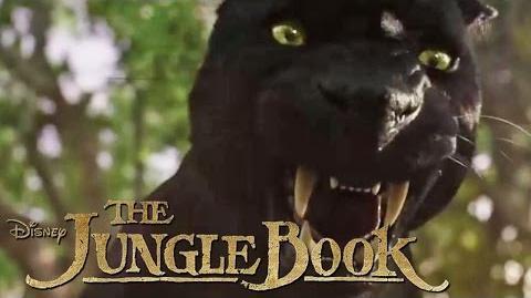 THE JUNGLE BOOK - Das wahre Gesicht des Dschungels - Ab 14