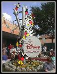 Disney-MGM-Animation-web