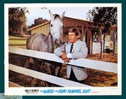 968full-the-horse-in-the-gray-flannel-suit-poster
