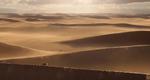 Desert 2019