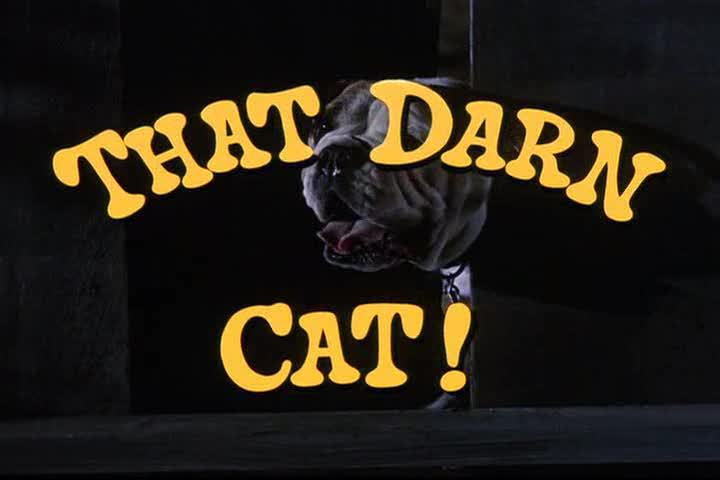 That Darn Cat! (Theme Song)