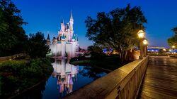 Disney Parks Slider.jpg