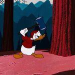 Donald preparing to chop a tree.jpg