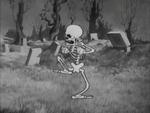 Skeletonnervous