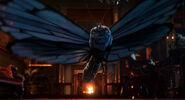 Alice TTLA Butterfly Absolem