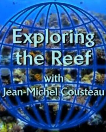 Exploring the Reef.JPG