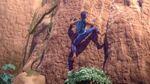 Marzel climbs the rock wall