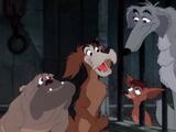 Pound Dogs