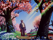 Uncle Remus looking at the sun
