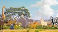 The Lion Guard The Golden Zebra WatchTLG snapshot 0.21.15.285 1080p