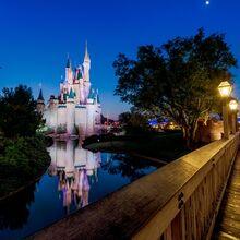 Cinderella-castle-liberty-square-bridge-moonLARGE-613x417.jpg
