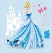 Cinderella Redesign 11
