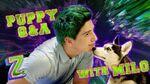 Milo Manheim Puppy Q&A Challenge! 🐶 ZOMBIES 2 Disney Channel