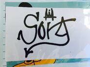 Sora Signature - Disney Park