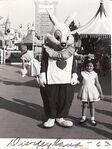 Disneyland photo white rabbit 1963